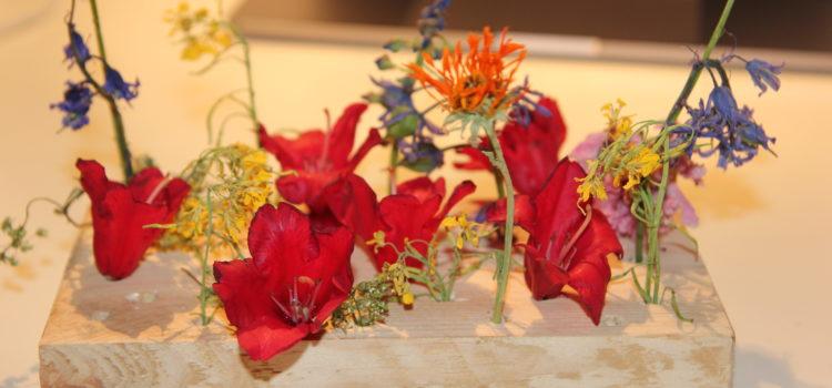 Getrocknete Blumenwiese